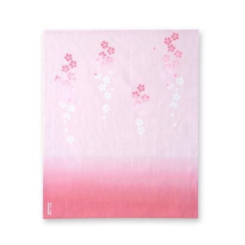 枝垂桜[はんかち]