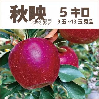 【産地直送りんご】 秋映 あきばえ 5キロ(1段箱)12玉〜16玉(大玉)