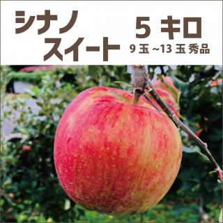 【産地直送りんご】 シナノスイート 5キロ(1段箱)10玉〜14玉(大玉)