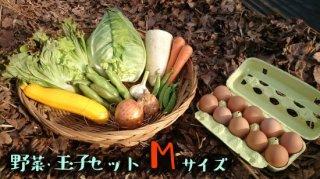 [送料込み]野菜・玉子セット レギュラーサイズ