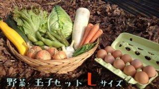[送料込み]野菜・玉子セット ファミリーサイズ