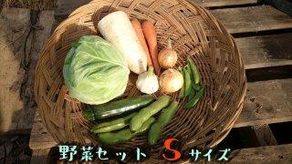 [送料込み]野菜セット スモールサイズ