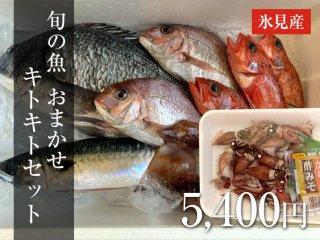 旬の魚 おまかせセット 8,000円