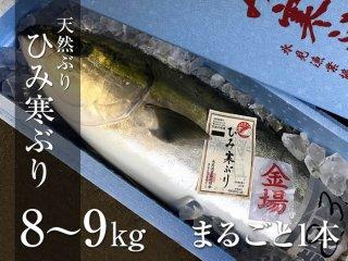 ひみ寒ぶり 8〜9kg まるごと1本