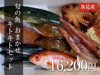 旬の魚 おまかせセット 20,000円