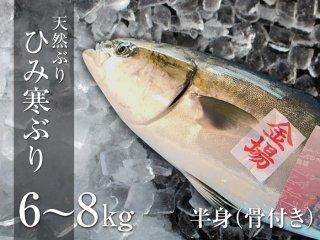 ひみ寒ぶり 6〜8kg 半身(骨付き)
