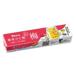 カンロ 健康梅のど飴ST 10入