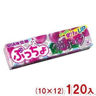 (本州一部送料無料) 味覚糖 ぷっちょスティック ぶどう (10×12)120入 (Y80)。