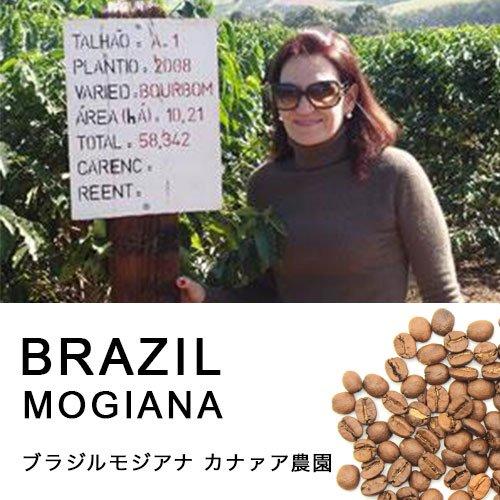 ブラジル・モジアナ カナァア農園