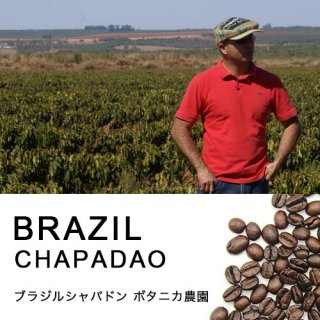 ブラジル シャパドン ボタニカ農園 (100g)