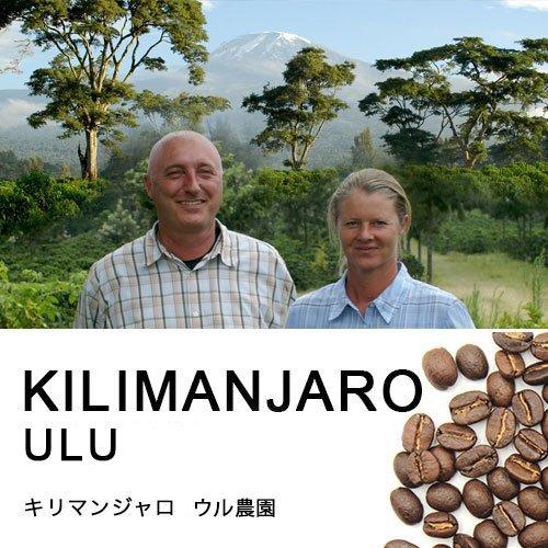 キリマンジャロ・マチャレ農園