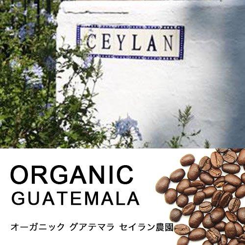 オーガニック・グァテマラ セイラン農園