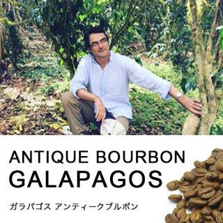 【レアカップ】ガラパゴス アンティークブルボン (100g)