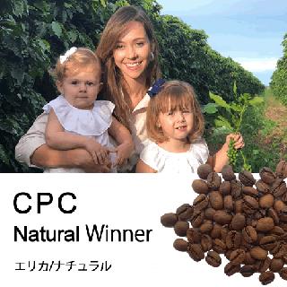 エリカ/ナチュラル CPC2019優勝カップ(100g)