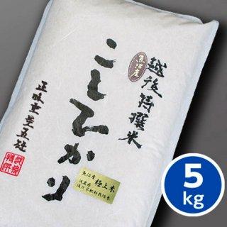 特選栽培こしひかり(極上米) 5kg