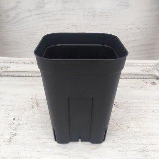 プレステラ [深鉢] 10.5cm 黒 -ハオルチア植え替えに
