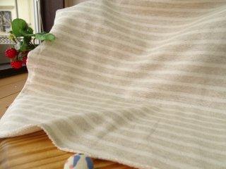 W巾杢カラー1�ボーダー裏毛ニット・ベージュ杢