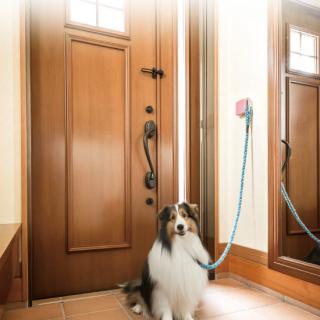 Doggy Hook 犬用リードフック 1個