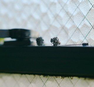 白詰草のピンブローチ -clover/trifolium repens pin brooch- (silver925・シルバー)