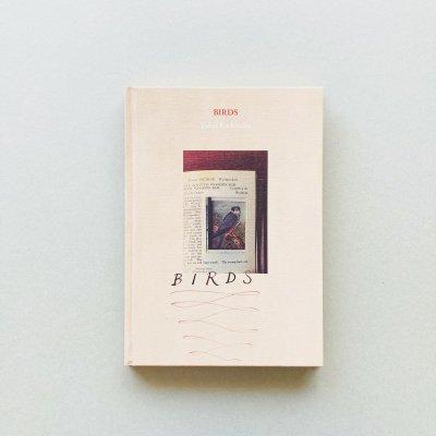 BIRDS<br>吉楽洋平 Yohei Kichiraku