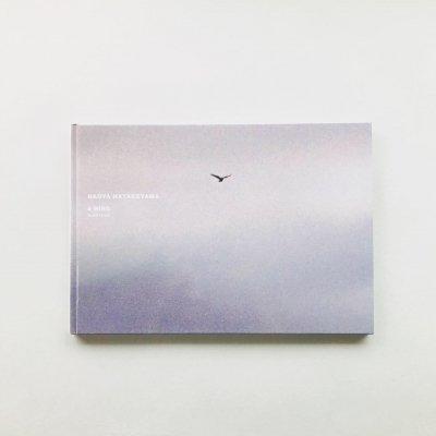 A BIRD BLAST #130 / 畠山直哉<br>Naoya Hatakeyama