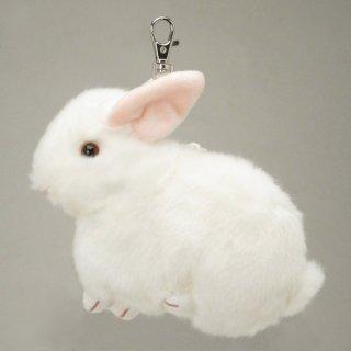 店内セール開催中!10%オフ対象商品 ウサギ パスケース (定期入れ) ホワイト どうぶつ