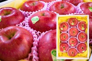 シナノスイート(りんご)10玉