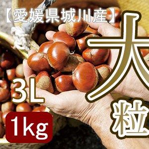 【秋だけの限定】愛媛県城川産の大粒生栗[3Lサイズ1kg入]