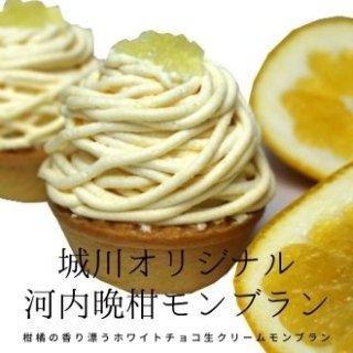 【送料無料】城川オリジナル河内晩柑モンブラン