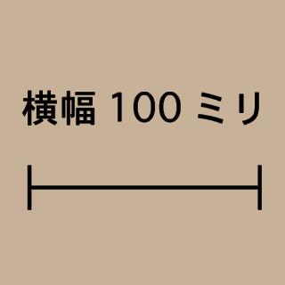 W100ミリ