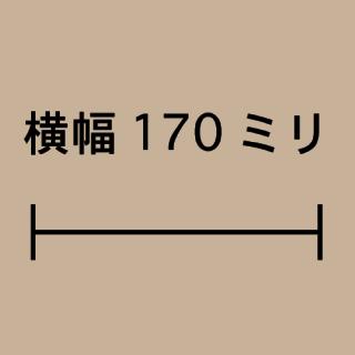 W170ミリ