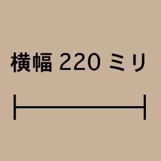 W220ミリ
