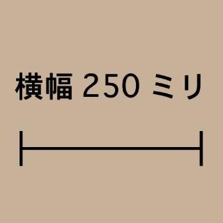 W250ミリ