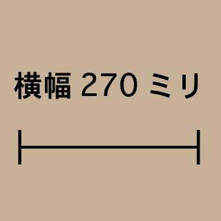 W270ミリ