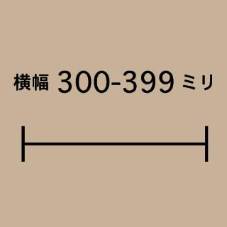 W300-399mm
