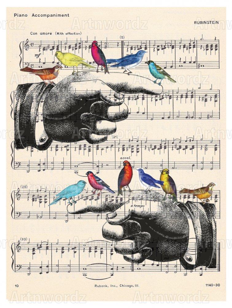 Finger Birds