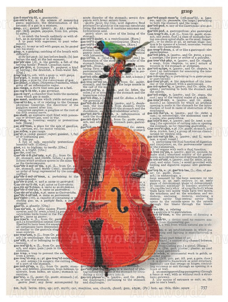 Cello Bird Music