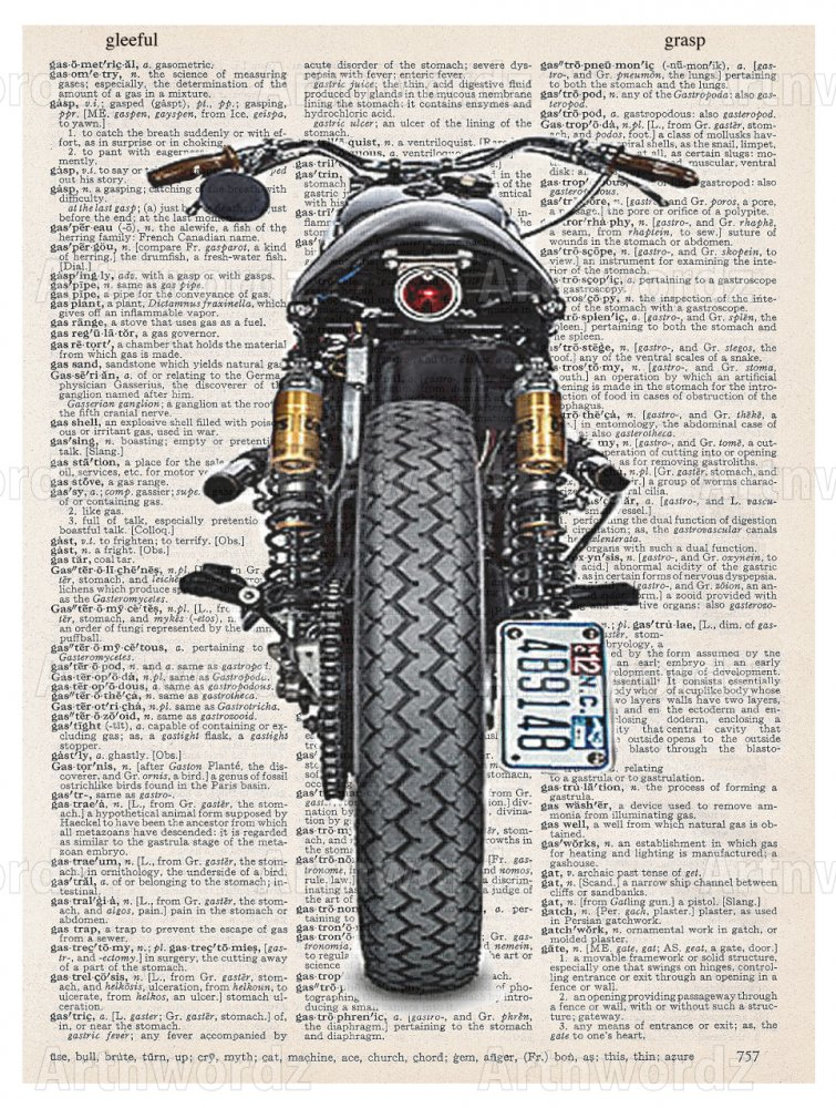 Moto Back