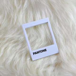Pantone Pin / Studio Cult