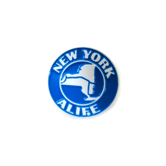 NEW YORK THRUWAY PIN
