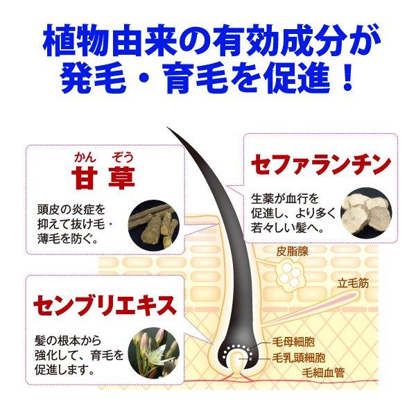 薬用髪雅育毛スカルプエッセンス【医薬部外品】