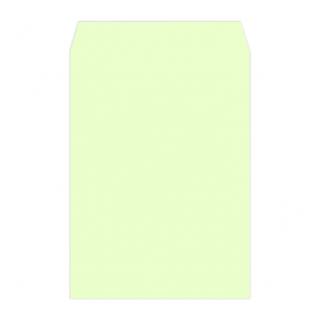 角2カラー封筒印刷(用紙:ウグイス100g)
