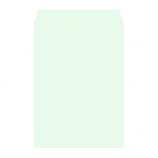角2カラー封筒印刷(用紙:ミズ100g)