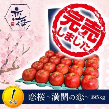 【1等級品】恋桜〜満開の恋〜約5kg(18〜20玉)