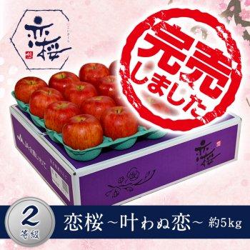 【2等級品】恋桜〜叶わぬ恋〜約5kg(20玉)