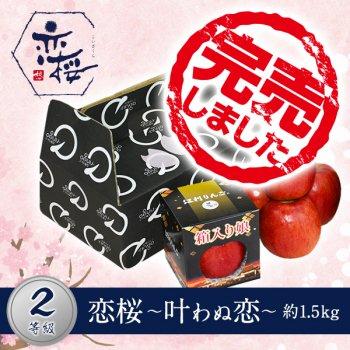 【2等級品】恋桜〜叶わぬ恋〜約1.5kg(6玉)