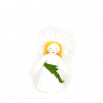 マーガレット ホワイト Ambrosius fairy/アンブロシウス フェアリー