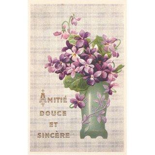 フランス製 ポストカード(すみれ)