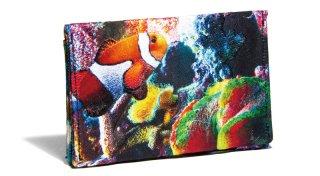 せと刺しゅう カードケース Tropical Fish トロピカルフィッシュ 名刺入れ