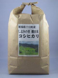 新潟県十日町産 しぶみの里 棚田米コシヒカリ